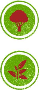 organic-icon-3