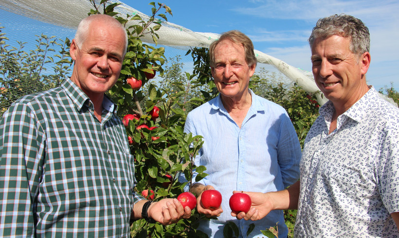 Bostock New Zealand Experiencing Highest Quality Apples For Several Years
