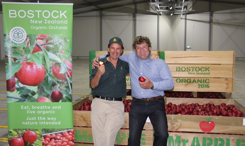 Hawke's Bay's Apple Exporters Partner Up to Open the Region's Largest Single Rooms Coolstore