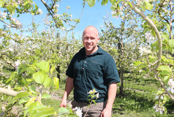 Hawke's Bay Apple Crop Budding Well for a High Quality Season