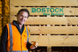 Bostock NZ - Onions - by Business Lifestyle Photographer John Miles Photography