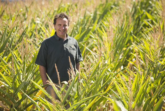 Pressure Mounts on Parliament to Support GM Free Growing Regions