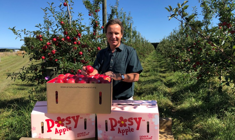 New Zealand's Two Big Apple Growers Launch the Country's Sweetest Apple