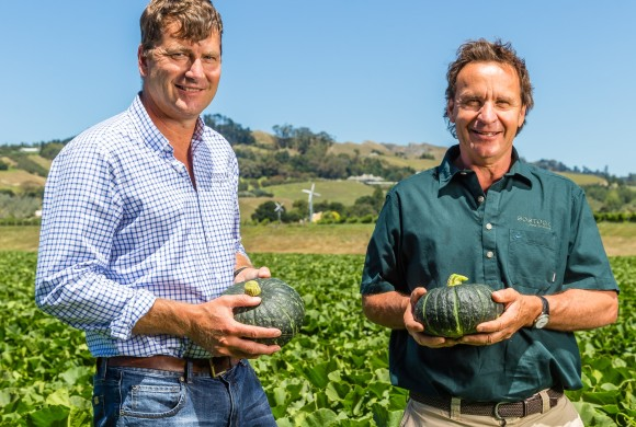 New Zealand's Leading Growers Partner Up to grow the World's Most Premium Squash Variety