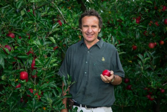 First Shipments of New Zealand's New Season Organic Apples Arrive in the US