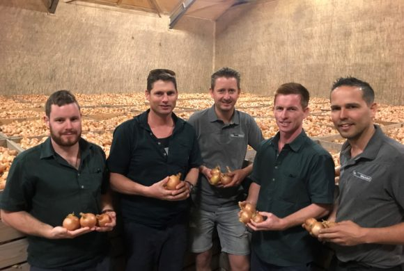 New Zealand's Very First Organic Onions Arrive in Europe