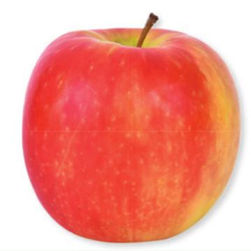 Organic Cripps Pink