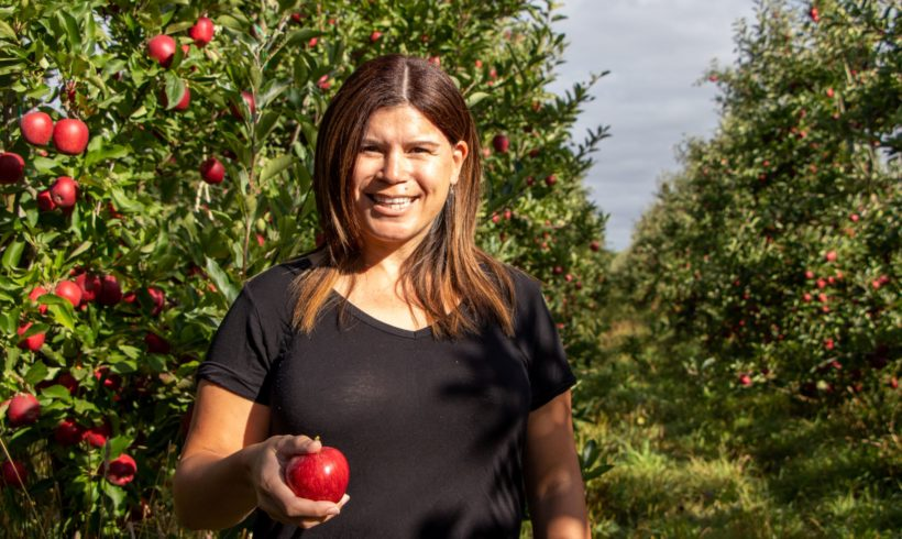 Demand for New Zealand Organic Apples Continues to Increase in China